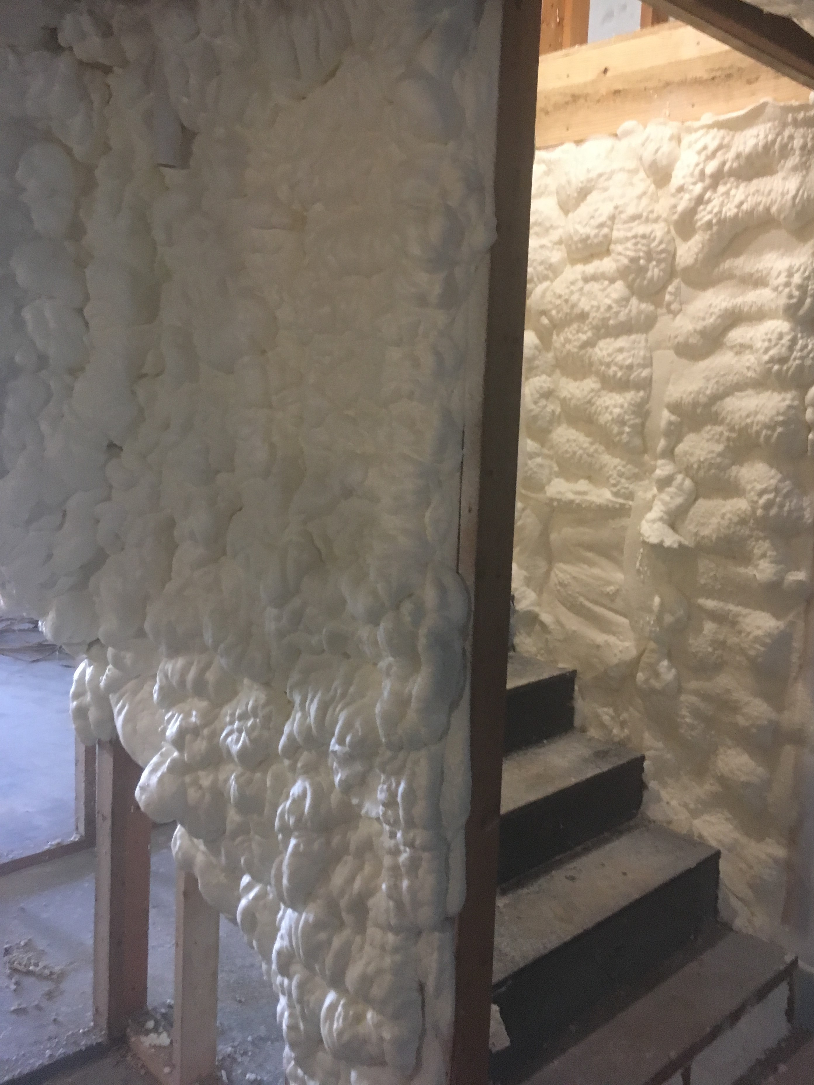 spray foam insulated to prevent energy escaping